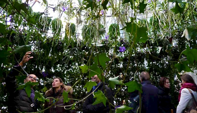 Le lendemain de la veille urbaine 13 le jardin urbain for Jardin urbain definition