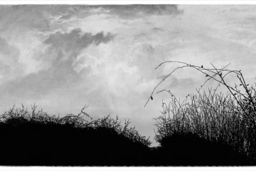 Bas-côtés, ©Will Argunas