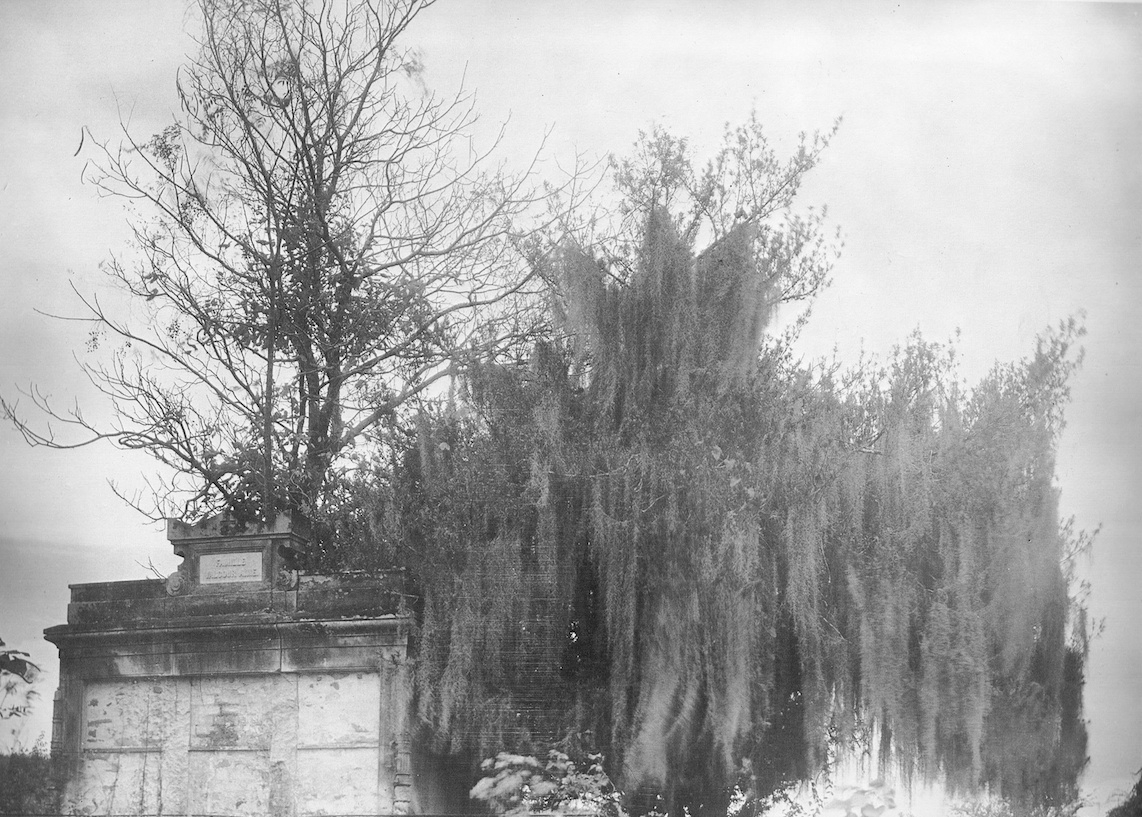 Clarence John Laughlin_Ghosts along the Mississippi-5