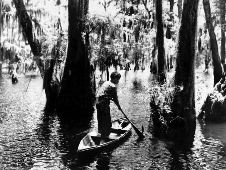Louisiana Story, par Robert Flaherty. N&B 78 minutes. 1948