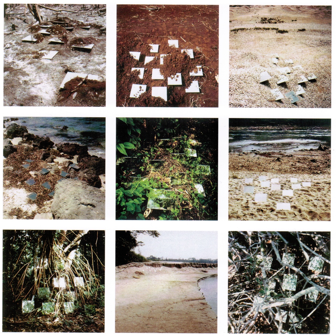 Robert Smithson, 9 Mirror Displacements (« Incidents of Mirror-Travel in the Yucatan »), 1969