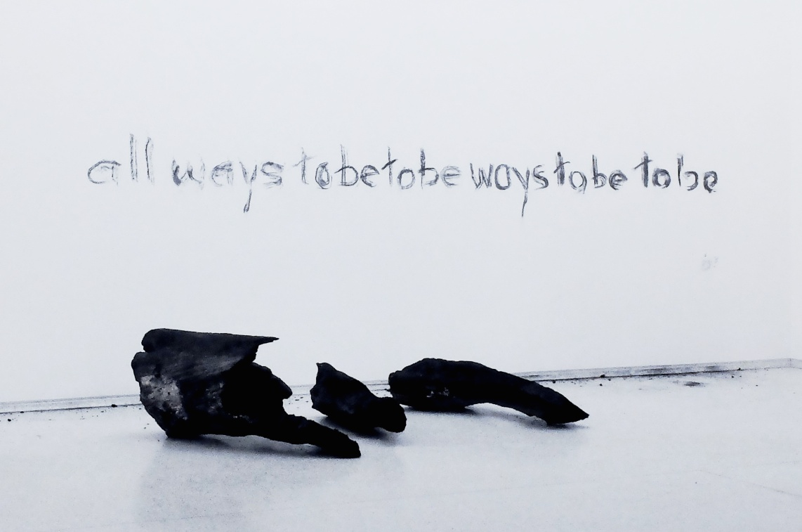Herman de Vries, To be all ways to be, Venise, 2015