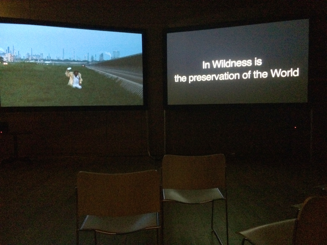 In Wildness is the preservation of the World, installation vidéo au Collège de France, novembre 2015