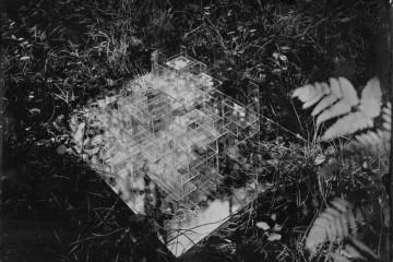 Laurent Millet, Je croyais voir un piège, 2012