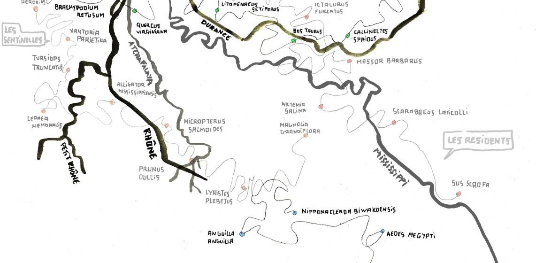 La carte de navigation du livre